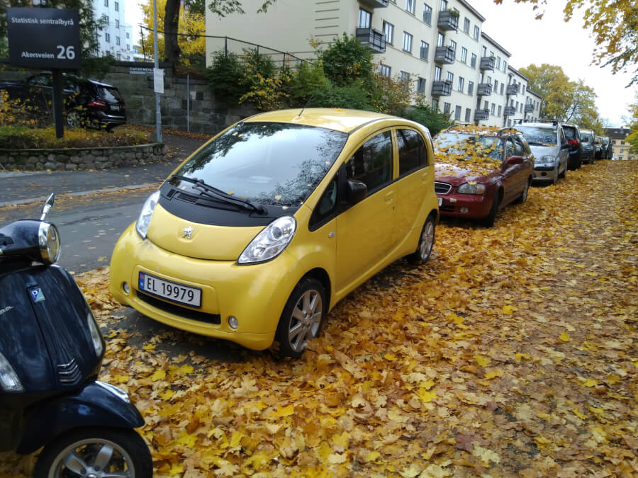 Peugeot Ion rudenīgās krāsās