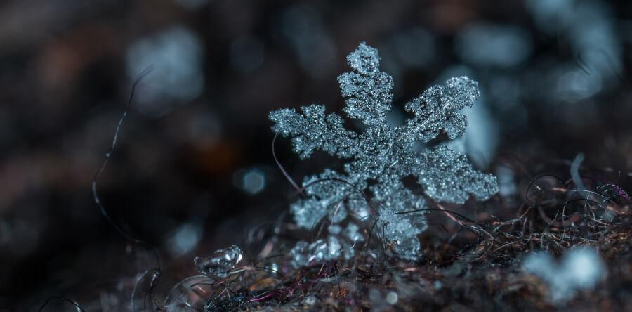 Sniegpārsla