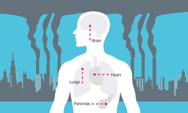 Gaisa piesārņojuma infografika. Avots: theguardian.com