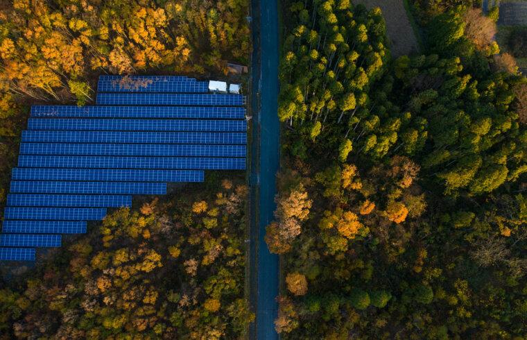 Saules paneļi rudenīgā mežā