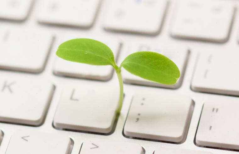 Zaļums no klaviatūras